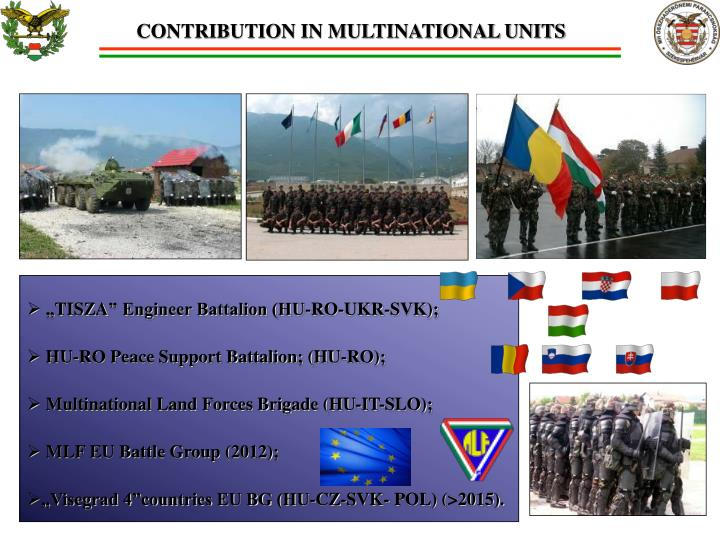 CONTRIBUTION IN MULTINATIONAL UNITS