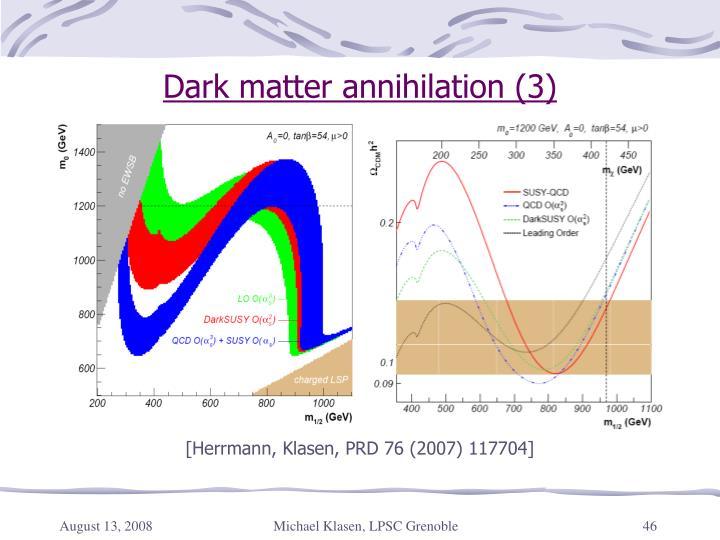 Dark matter annihilation (3)