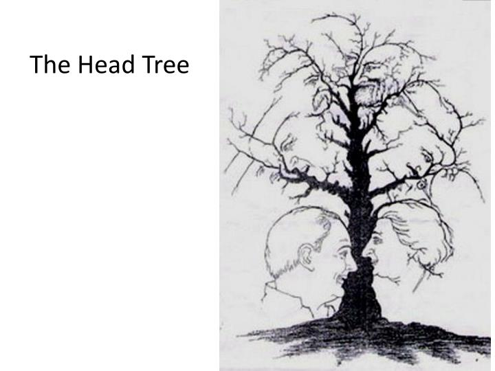 The Head Tree
