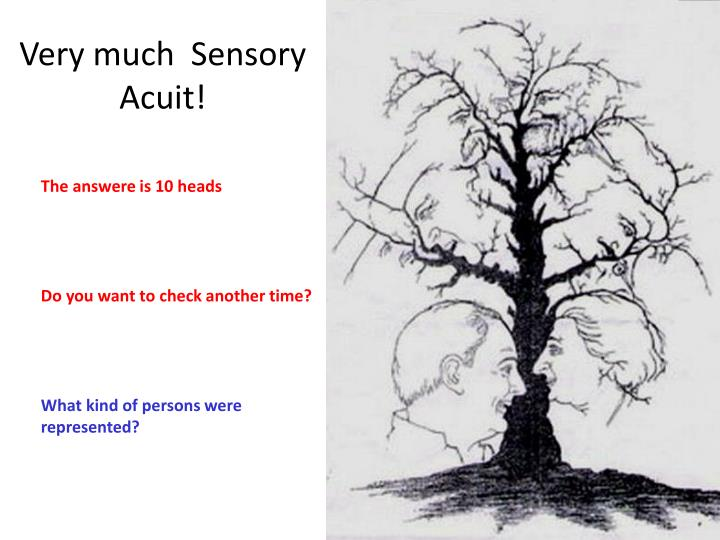 Very much  Sensory Acuit