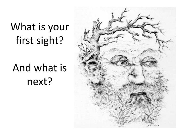 What is your first sight?
