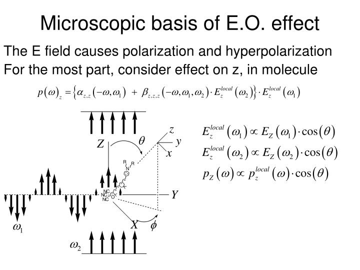 Microscopic basis of E.O. effect
