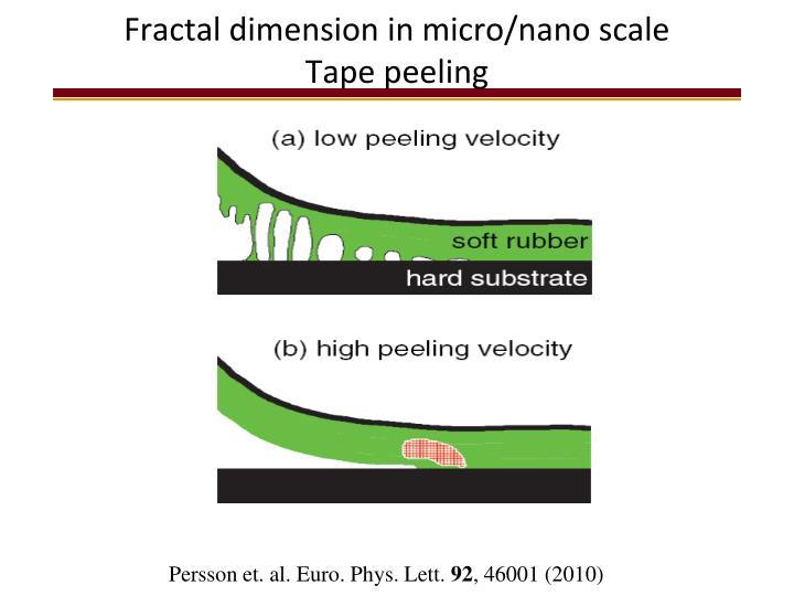 Fractal dimension in micro/nano scale