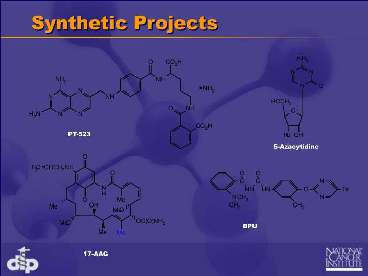 Synthetic Projects