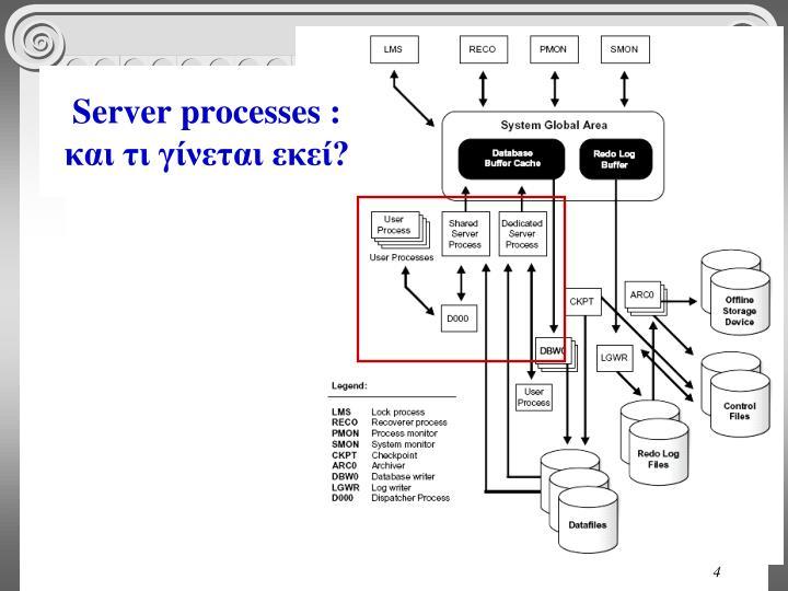 Server processes :