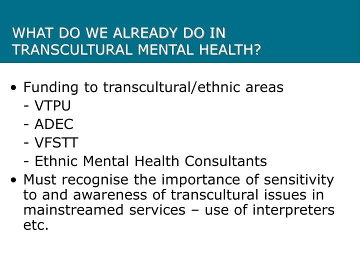 WHAT DO WE ALREADY DO IN TRANSCULTURAL MENTAL HEALTH?