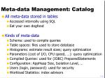 meta data management catalog
