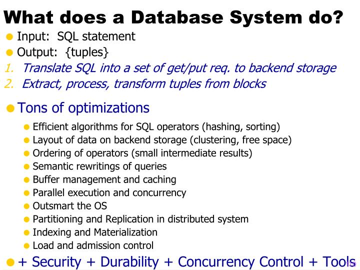 What does a Database System do?