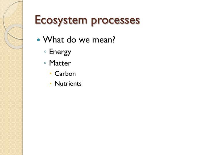 Ecosystem processes