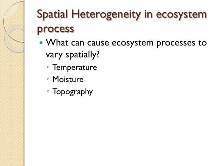 Spatial Heterogeneity in ecosystem process