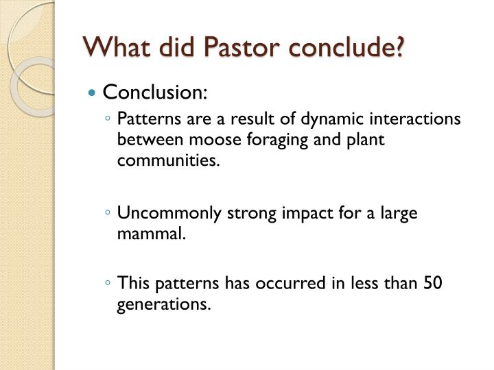 What did Pastor conclude?