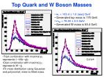 top quark and w boson masses