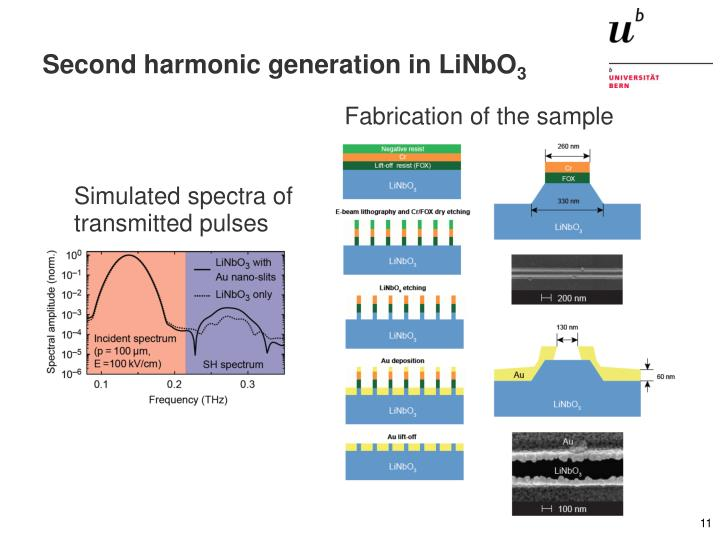 Second harmonic generation in LiNbO
