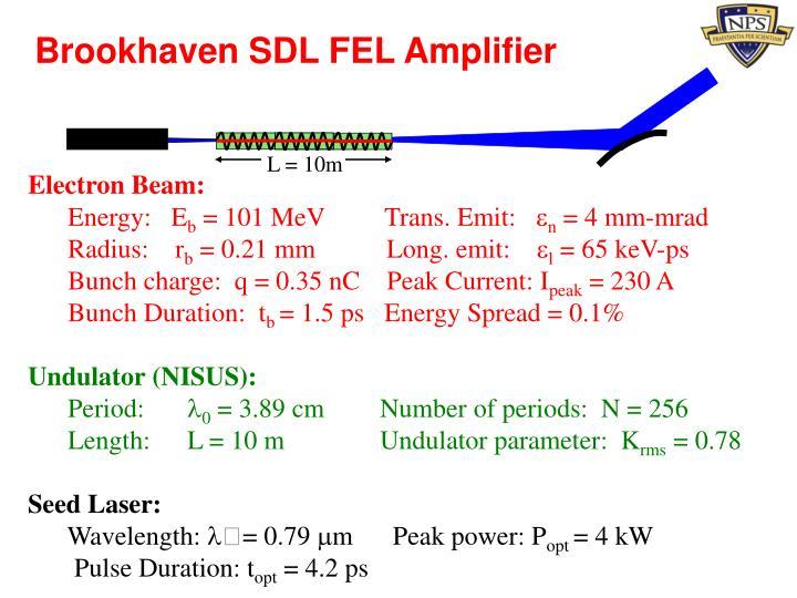 Brookhaven SDL FEL Amplifier
