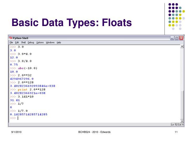Basic Data Types: Floats