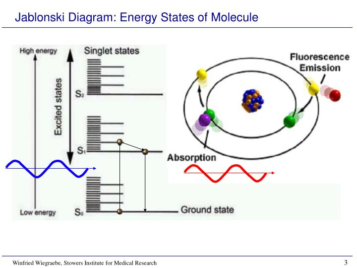 Jablonski Diagram: Energy States of Molecule