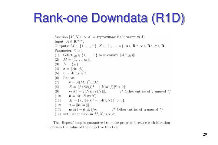 Rank-one Downdata (R1D)