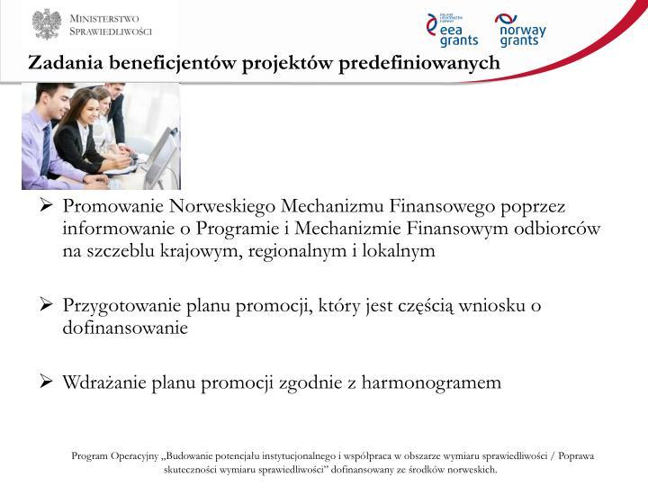 Zadania beneficjentów projektów predefiniowanych
