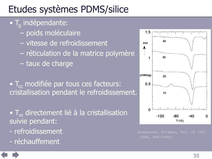 Etudes systèmes PDMS/silice
