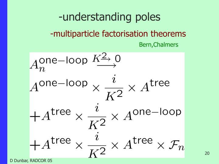-understanding poles