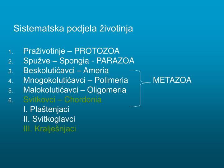 Sistematska podjela životinja