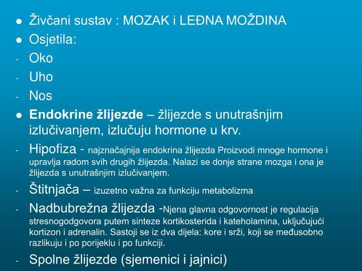 Živčani sustav : MOZAK i LEĐNA MOŽDINA