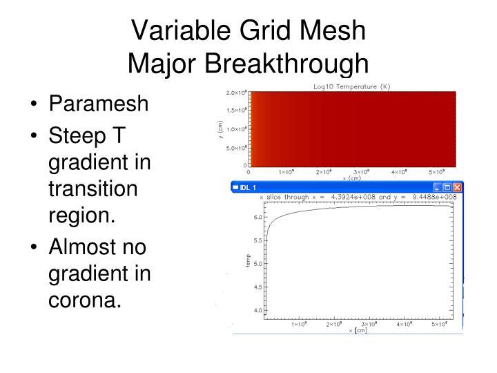Variable Grid Mesh