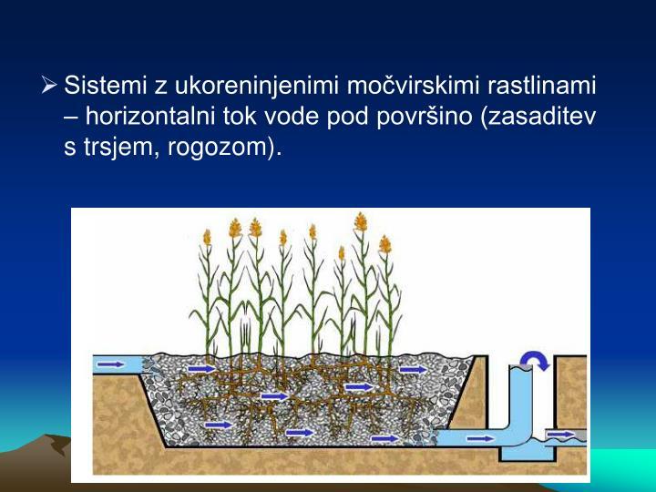 Sistemi z ukoreninjenimi močvirskimi rastlinami – horizontalni tok vode pod površino (zasaditev s trsjem, rogozom).