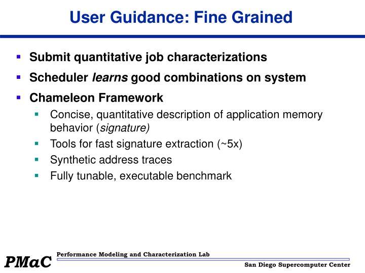User Guidance: Fine Grained