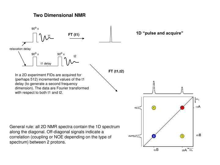 Two Dimensional NMR