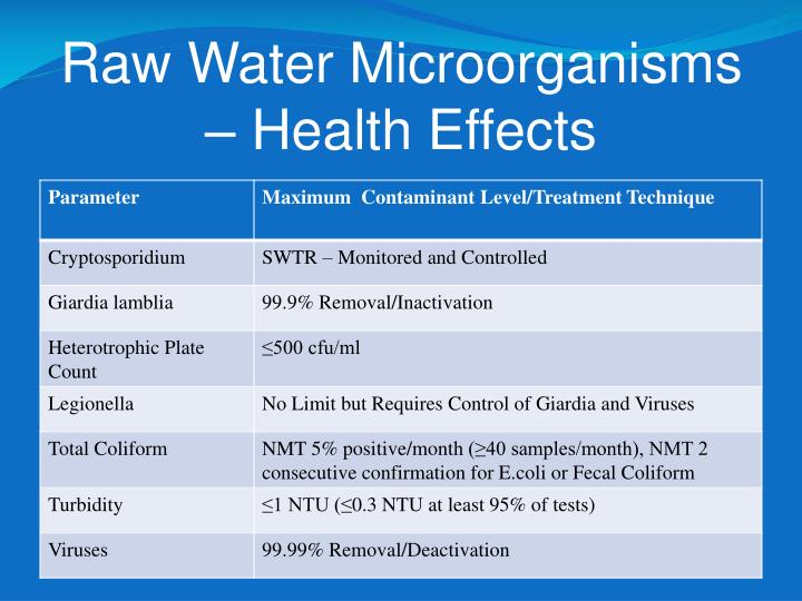 Raw Water Microorganisms – Health Effects