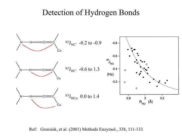 Detection of Hydrogen Bonds