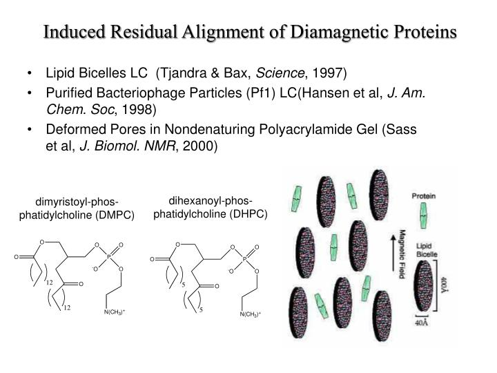 Induced Residual Alignment of Diamagnetic Proteins