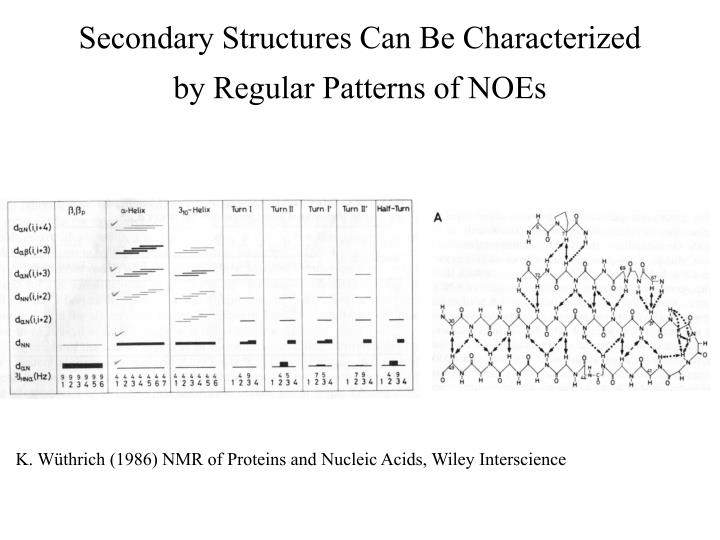 Secondary Structures Can Be Characterized by Regular Patterns of NOEs