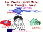 bio psycho social model drugs counselling support