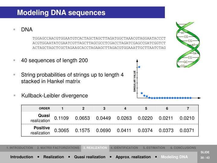Modeling DNA sequences