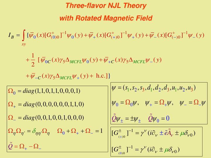 Three-flavor NJL Theory