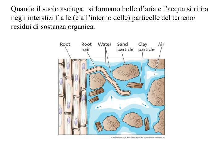 Quando il suolo asciuga,  si formano bolle d'aria e l'acqua si ritira