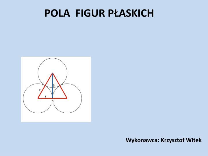 Wykonawca: Krzysztof Witek