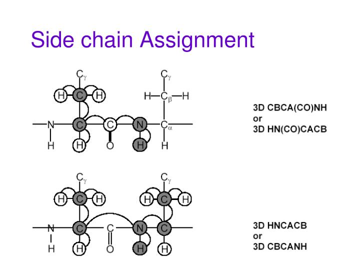 Side chain Assignment