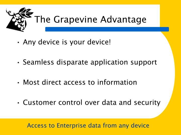 The Grapevine Advantage