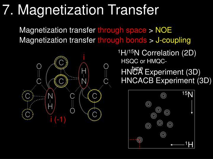 7. Magnetization Transfer