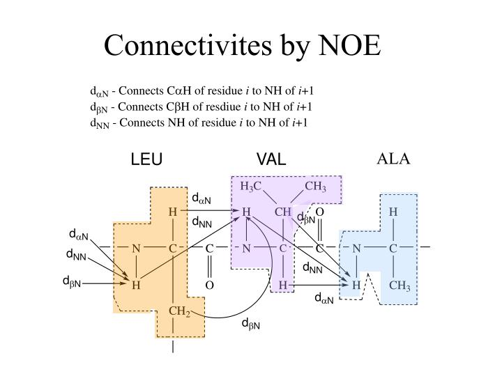Connectivites by NOE