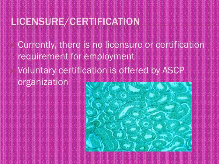 Currently, there is no licensure or certification requirement for employment