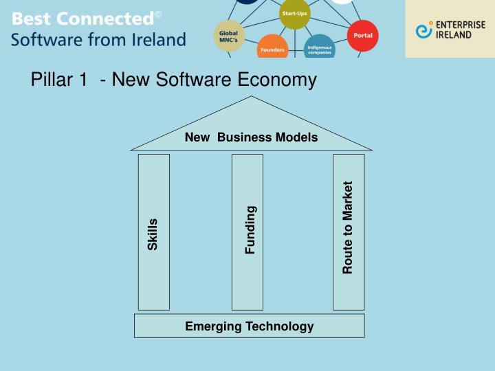Pillar 1  - New Software Economy