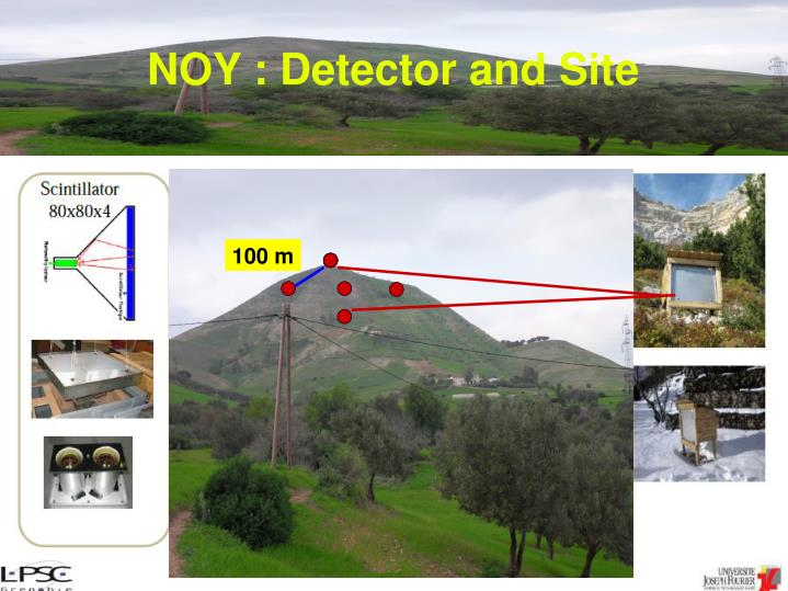 NOY : Detector and Site