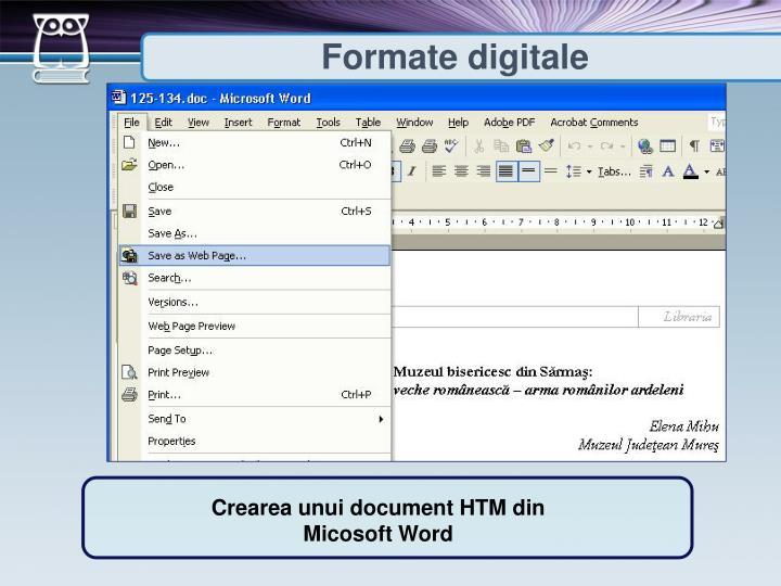 Formate digitale