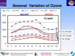 sesonal variation of ozone