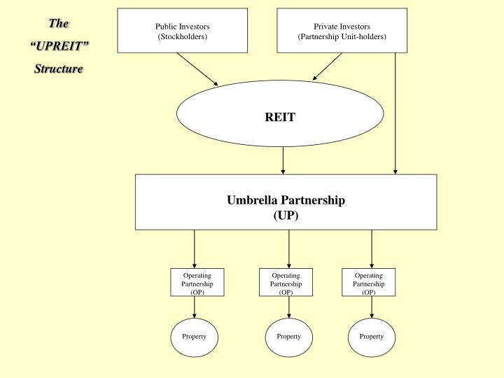 Public Investors