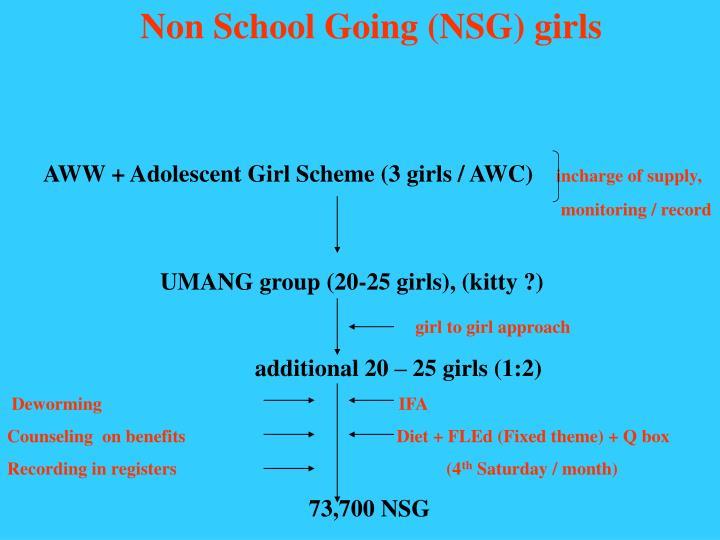 Non School Going (NSG) girls